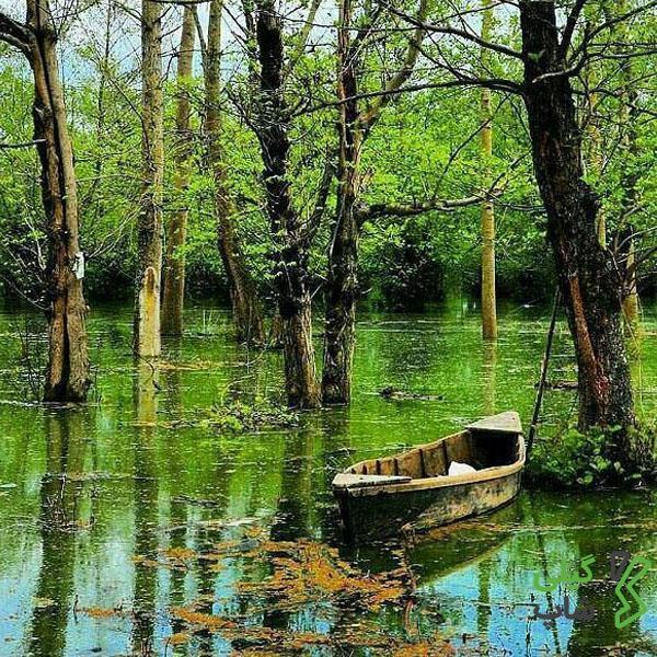 تالاب استیل در استان گیلان