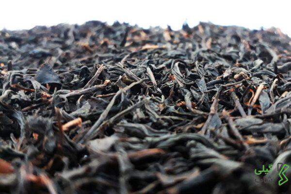 خرید چای قلم درجه دو استان گیلان و شهرستان لاهیجان