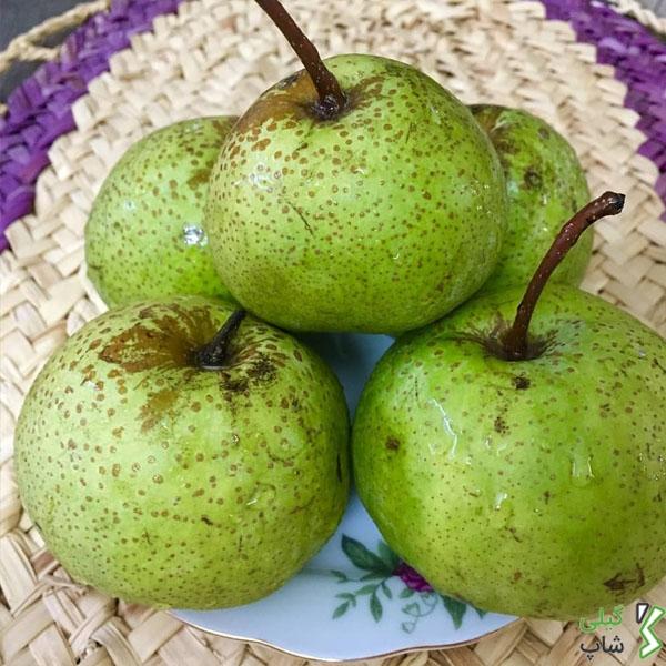 میوه رودسر