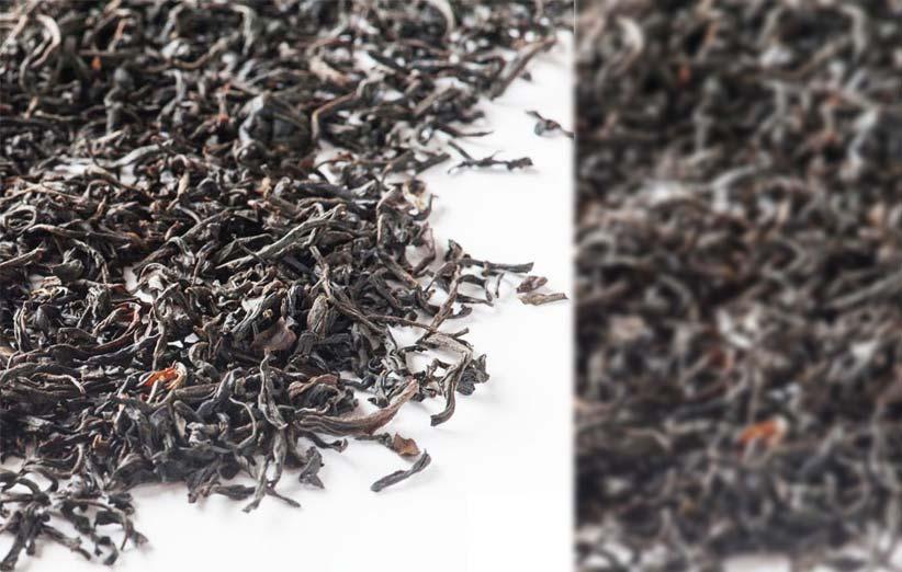 خرید چای قلم گیلان