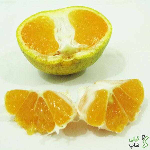 قیمت روز نارنگی شمال