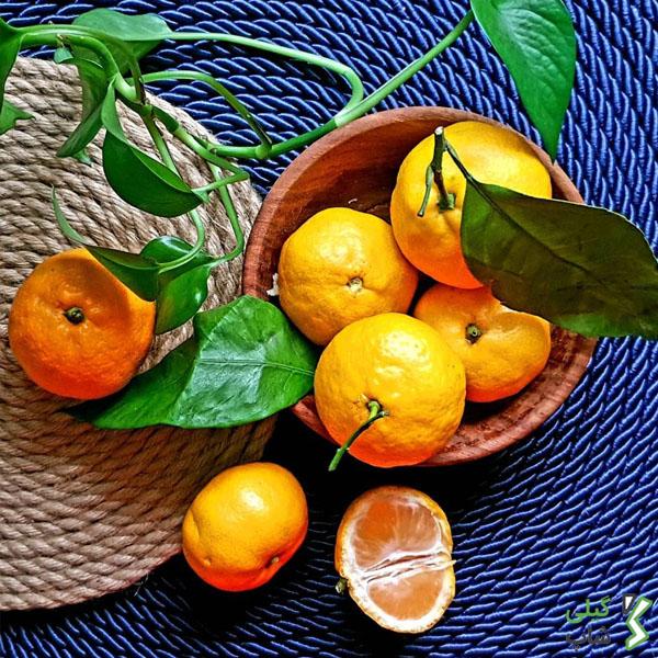 قیمت روز نارنگی در شمال + عکس