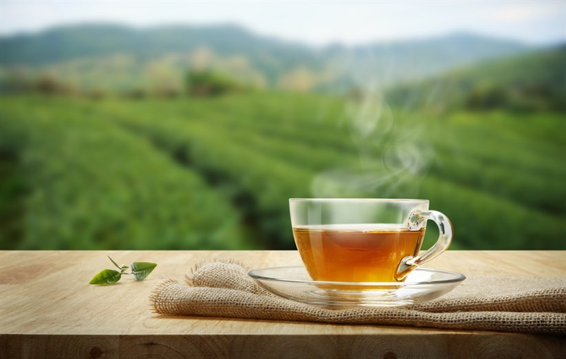 خرید اینترنتی چای قلم درجه یک لاهیجان | (۱۵ درصد تخفیف)