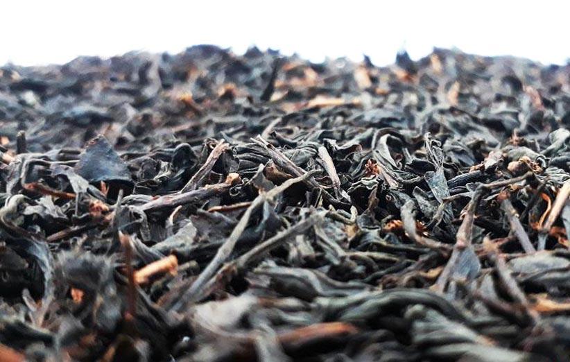 انواع چای عطری و خوش طعم گیلان