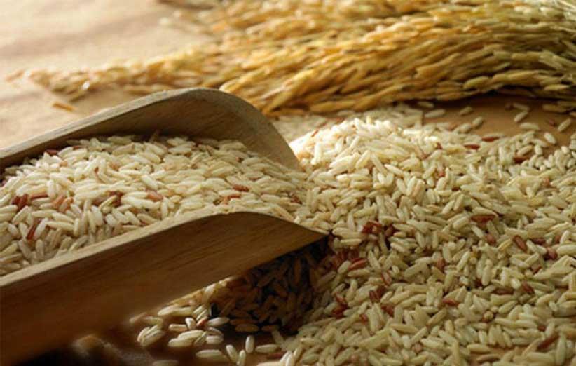 مصرف سبوس برنج