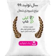 برنج شیرودی شمال