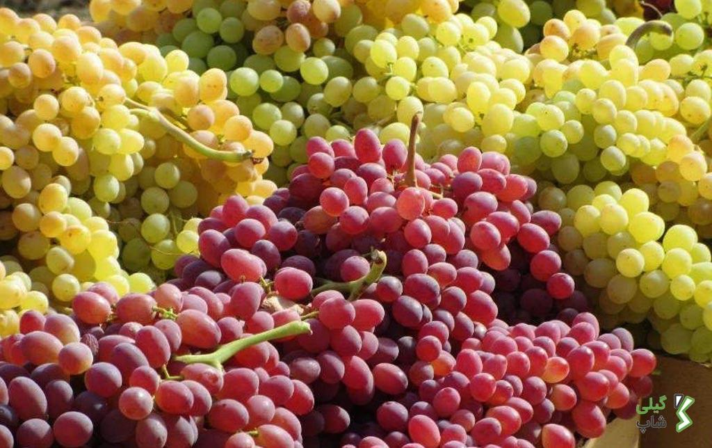 انگور و کشمش اراک